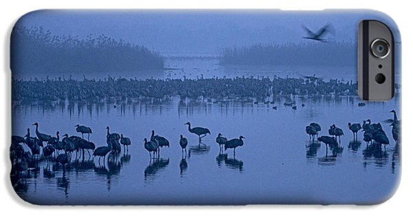 Sunrise Over The Hula Valley Israel 4 IPhone 6 Case by Dubi Roman