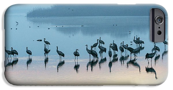 Sunrise Over The Hula Valley Israel 5 IPhone 6 Case by Dubi Roman