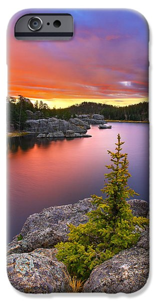 Landscapes iPhone 6 Case - The Bonsai by Kadek Susanto