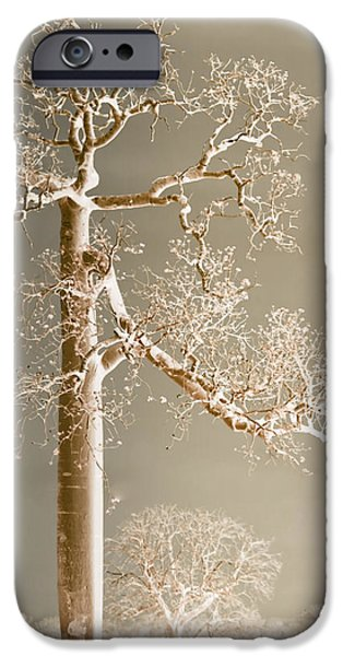 iPhone 6 Case - The Dreaming Tree by Holly Kempe