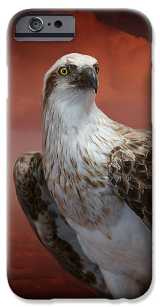 iPhone 6 Case - The Glory Of An Eagle by Holly Kempe