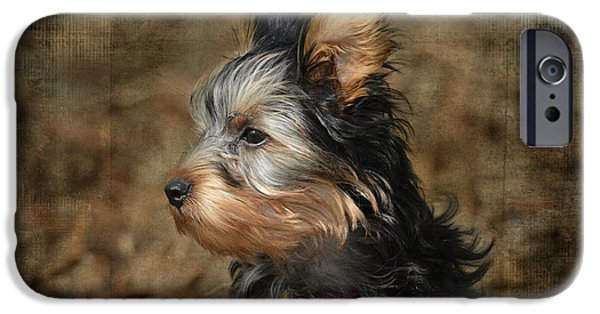 Black Dog iPhone Cases - The Wind in Her Hair iPhone Case by Jai Johnson