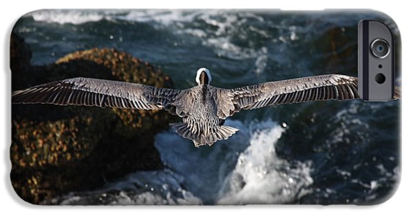 IPhone 6 Case featuring the photograph Through The Eyes Of A Pelican by Nathan Rupert