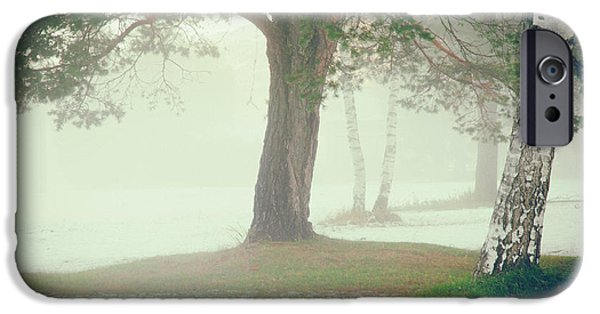 IPhone 6 Case featuring the photograph Trees In Fog by Silvia Ganora