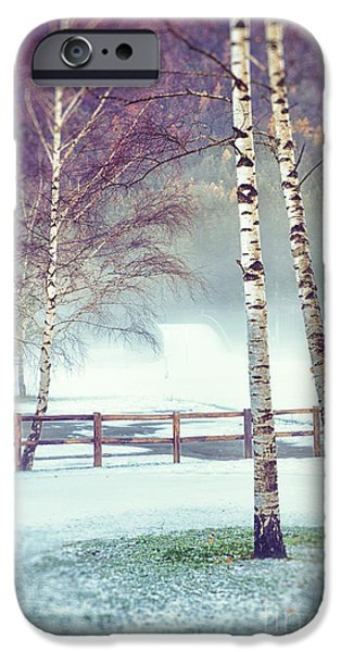 Two Birches IPhone 6 Case by Silvia Ganora