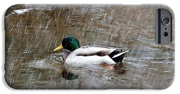 IPhone 6 Case featuring the photograph Un Froid De Canard by Marc Philippe Joly