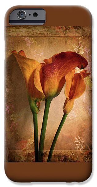 IPhone 6 Case featuring the photograph Vintage Calla Lily by Jessica Jenney