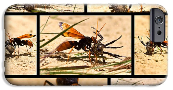 IPhone 6 Case featuring the photograph Wasp And His Kill by Miroslava Jurcik