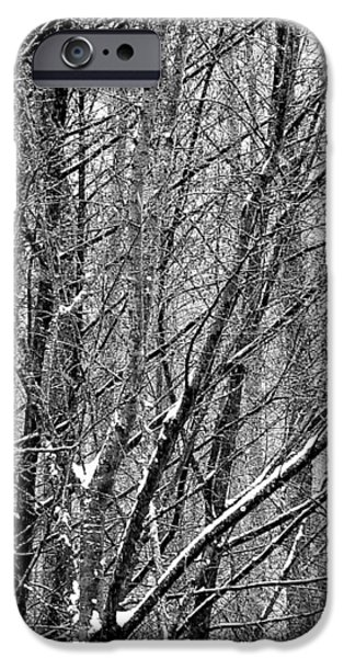 IPhone 6 Case featuring the photograph White Forest by Marc Philippe Joly