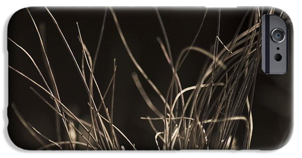 IPhone 6 Case featuring the photograph Winter Grass 2 by Yulia Kazansky