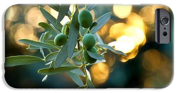 Olive Garden iPhone 6 Cases | Fine Art America