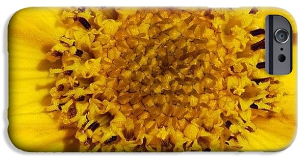 Bright iPhone 6 Case - Yellow Flower Detail by Matthias Hauser