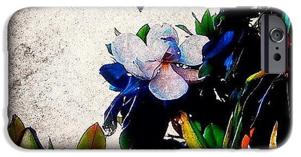 Edit iPhone 6 Case - Canvas Magnolia by Mari Posa