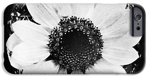 Edit iPhone 6 Case - Daisy by Mari Posa