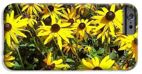 Bright iPhone 6 Case - Flowers by Lea Ward