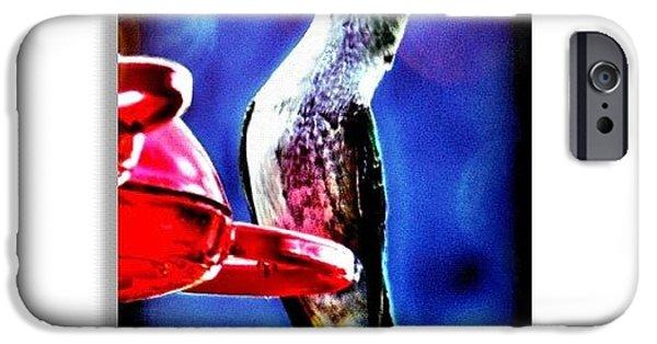 Edit iPhone 6 Case - Hummingbird by Mari Posa