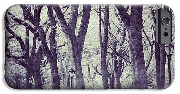 City iPhone 6 Case - Seasons Change by Randy Lemoine