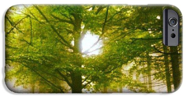 Sunny iPhone 6 Case - Summerskyforest by Kim  Nyheim