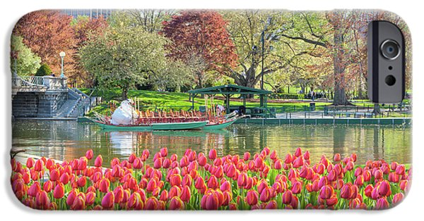 Back Bay iPhone Cases - Swans and Tulips 2 iPhone Case by Susan Cole Kelly