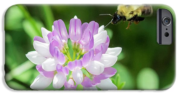 Bumble Bee Pollinating A Flower IPhone 6 Case by Ricky L Jones