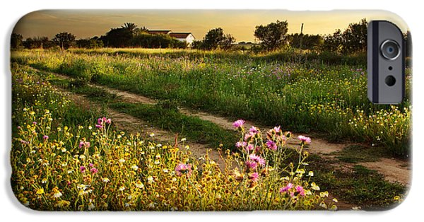 Meadow Photographs iPhone Cases - Countryside Landscape iPhone Case by Carlos Caetano