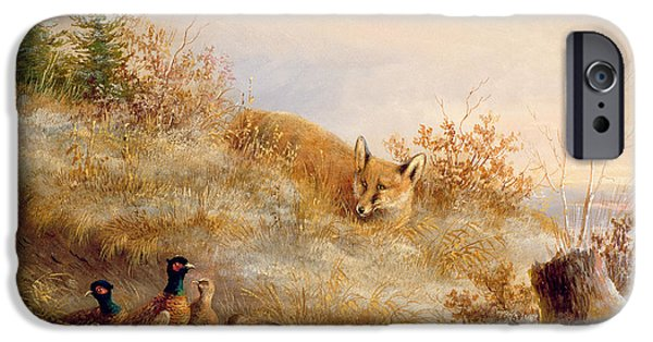 Young Paintings iPhone Cases - Fox and Pheasants in Winter iPhone Case by Anonymous