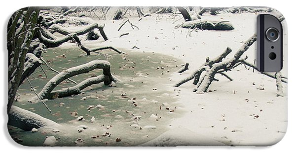 Swindon iPhone Cases - Frozen Fallen Sq iPhone Case by Andy Smy