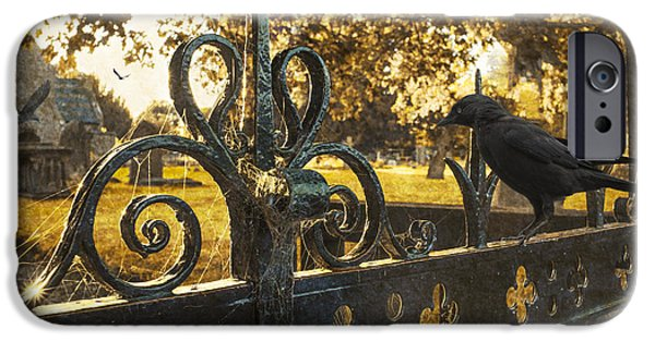 Headstone iPhone Cases - Jackdaw On Church Gates iPhone Case by Amanda And Christopher Elwell