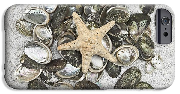 Concept Photographs iPhone Cases - Seashells iPhone Case by Joana Kruse