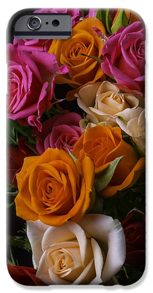Red Rose iPhone 6 Case - Spray Roses by Garry Gay