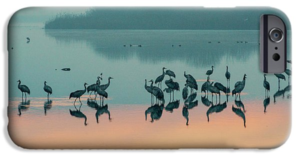 Sunrise Over The Hula Valley IPhone 6 Case by Dubi Roman