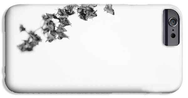 Wintertime iPhone Cases - Untitled iPhone Case by Gabriela Insuratelu