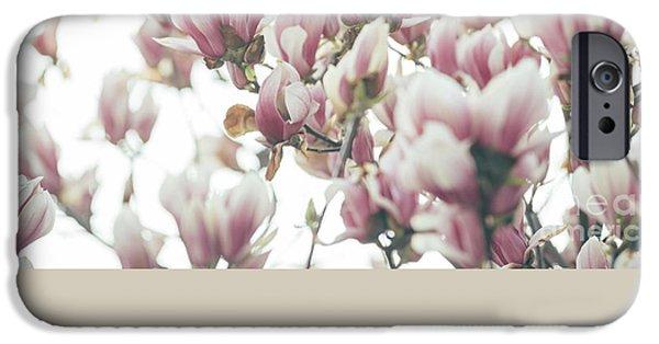 Tree iPhone 6 Case - Magnolia by Jelena Jovanovic