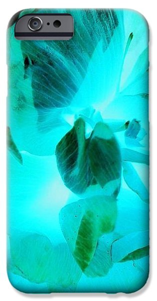 iPhone 6 Case - A Bloom In Turquoise by Orphelia Aristal