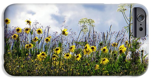 A Daisy Day IPhone 6 Case