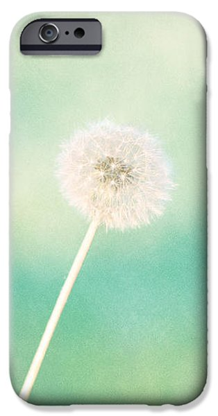 Print Photographs iPhone Cases - A Single Wish iPhone Case by Amy Tyler