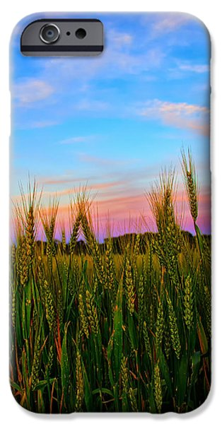 Field. Cloud iPhone Cases - A View from Crop Level iPhone Case by Bill Tiepelman