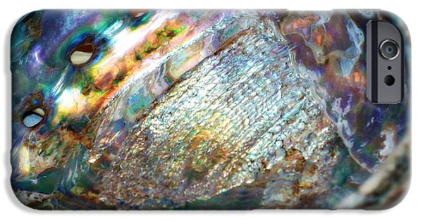 Abalones iPhone Cases - Abalone iPhone Case by Cricket Hackmann