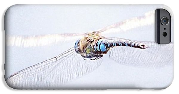 iPhone 6 Case - Aeshna Juncea - Common Hawker In by John Edwards