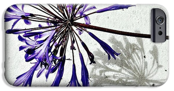 iPhone 6 Case - Agapanthus by Julie Gebhardt