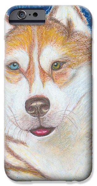 Husky Drawings iPhone Cases - Alek the Siberian Husky iPhone Case by Ania M Milo