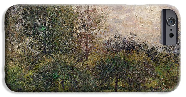 Apple Trees iPhone Cases - Apple Trees and Poplars in the Setting Sun iPhone Case by Camille Pissarro