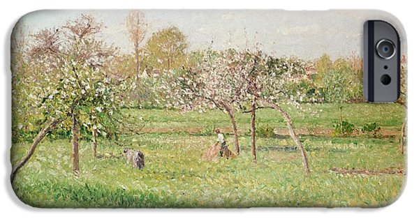 Apple Trees iPhone Cases - Apple Trees at Gragny iPhone Case by Camille Pissarro