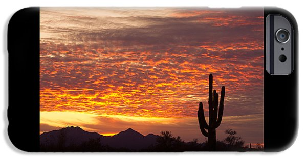 Arizona November Sunrise With Saguaro   IPhone 6 Case