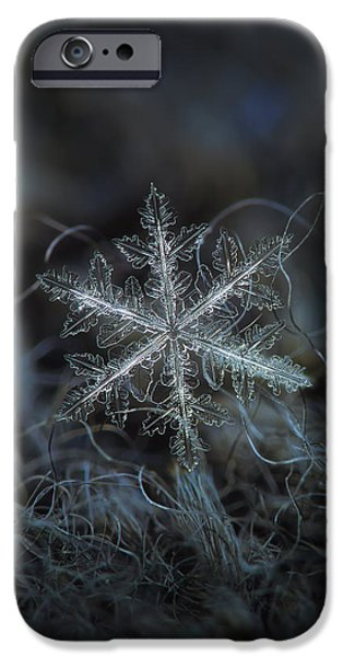 Leaves Of Ice IPhone 6 Case