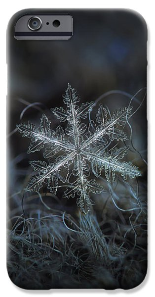 Leaves Of Ice, Panoramic Version IPhone 6 Case