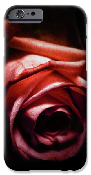 Red Rose iPhone 6 Case - Red Rose by Nicklas Gustafsson