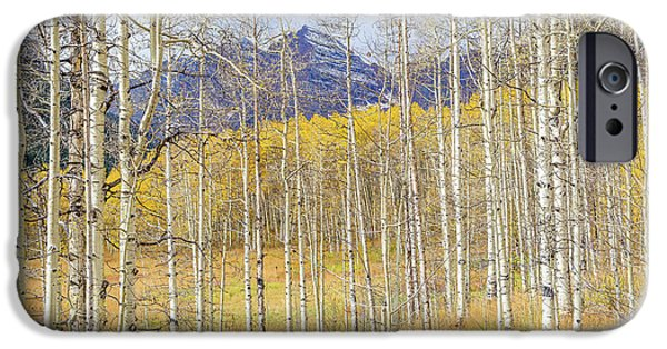 Fall iPhone Cases - Aspen Ambience iPhone Case by Eric Glaser