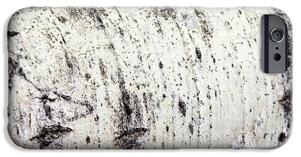 IPhone 6 Case featuring the photograph Aspen Tree Bark by Christina Rollo