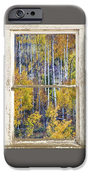 Aspen Tree Magic Cottonwood Pass White Farm House Window Art IPhone 6 Case